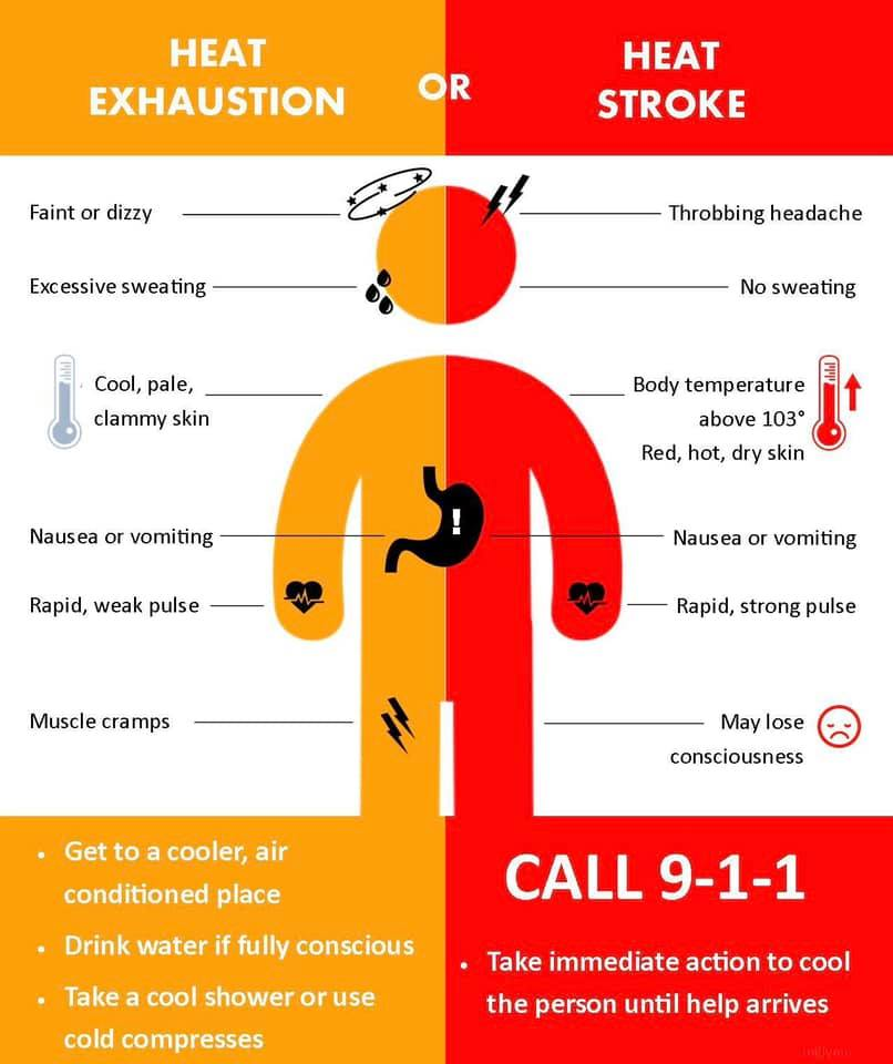 Signs of Heat sickness - flyer